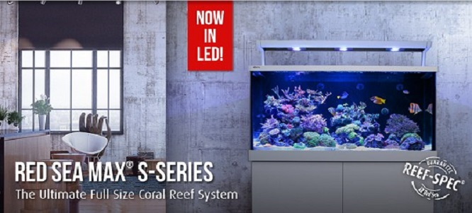 Red Sea MAX S LED Acvarii marine complete