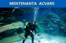 Mentenanta Acvarii