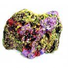 Roca | Piatra vie pentru acvariu marin