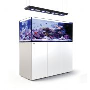 Acvariu Red Sea Peninsula P650 Deluxe Complete System - White