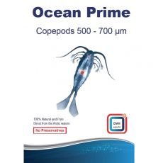 Copepods 500-700 microns Ocean Prime