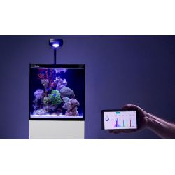 Complet Aquarium Red Sea MAX NANO, LED Prime HD White