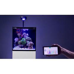 Complet Aquarium Red Sea MAX NANO, LED Prime HD White