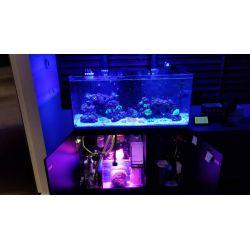 Kessil H380 Spectral Halo II - lampa crestere macro alga