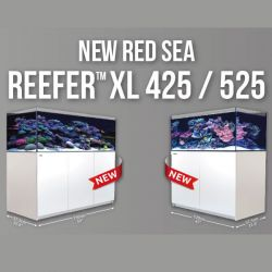 Red Sea Reefer XL 425 Alb