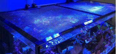 JUMP GUARD 75x75 cm Plasa pentru acoperire acvariu