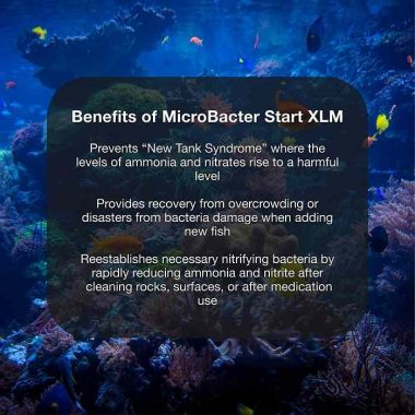 MicroBacter Start XLM 500ml - Brightwell Aquatics