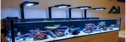 iluminatului pentru acvariul marin